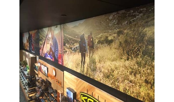Full Color Environmental Wall Graphics for Scheels in Overland Park, Kansas